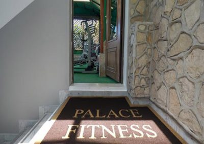 palace-fitness